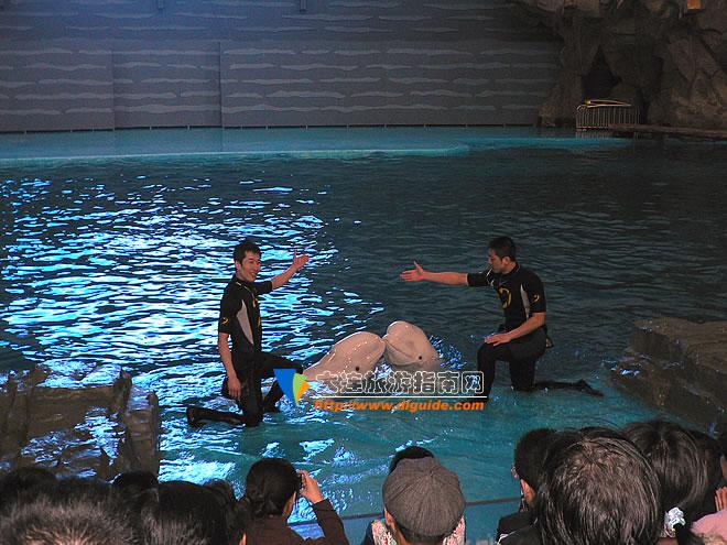 —极地海洋动物馆