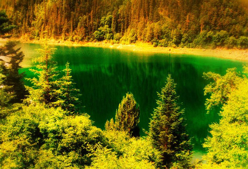 黄龙风景区,景区黄龙沟的数千个钙化彩池形态各异